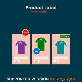 Magento 2 product label extension